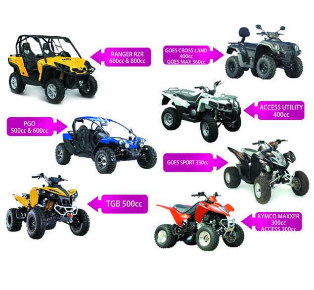 quad bikes and buggies